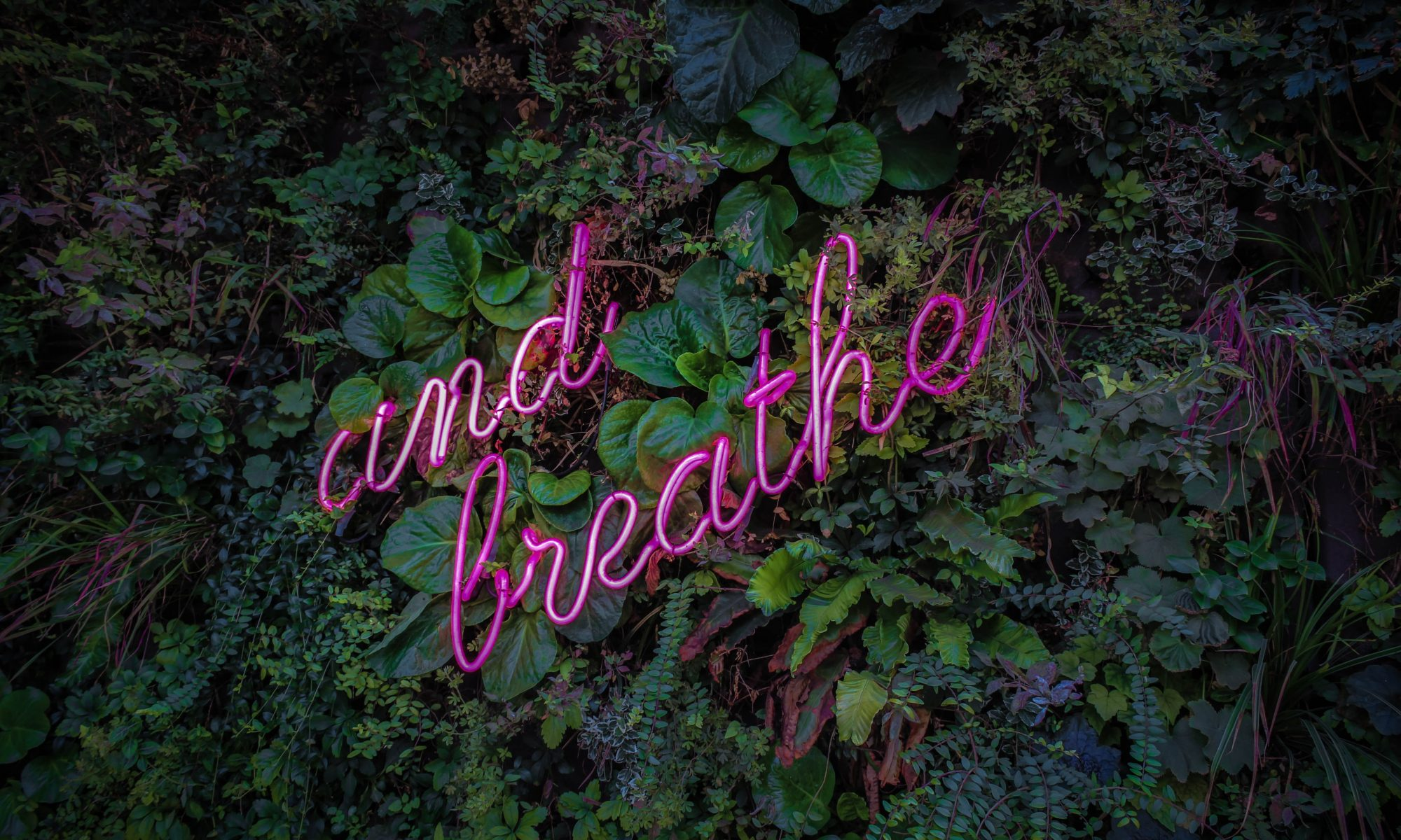 And Breathe | Pilates | Hertfordshire
